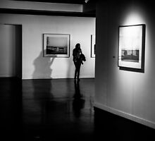 Shadows in the museum by danivazquez