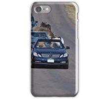 Donkey Highway iPhone Case/Skin