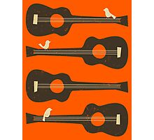 BIRDS ON A GUITAR STRING Photographic Print