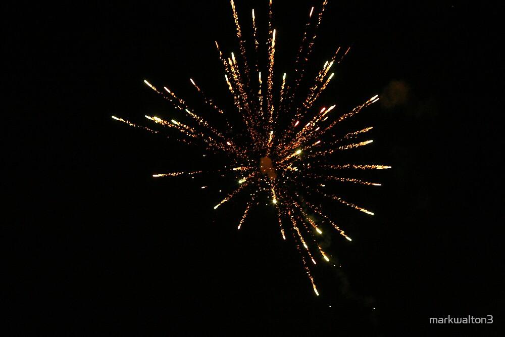 firework by markwalton3