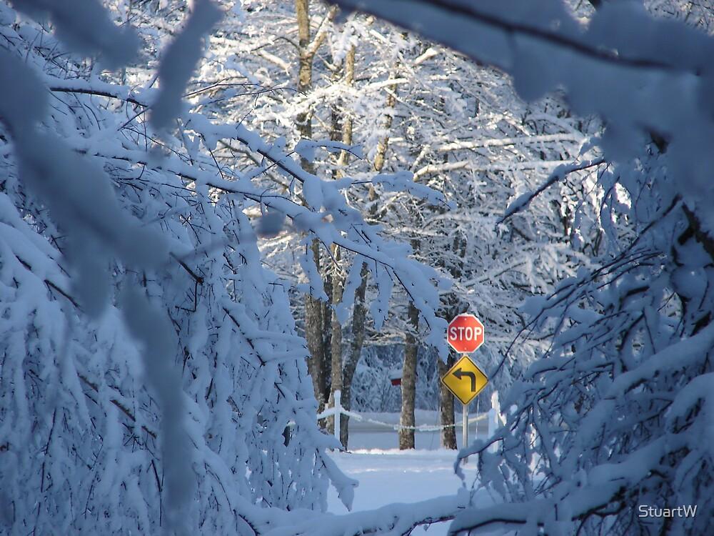 Snow Day by StuartW