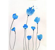 Bright blue flowers Photographic Print
