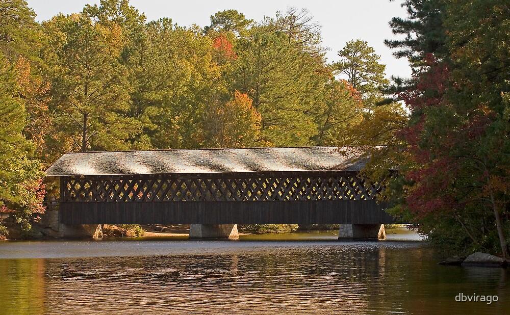 Covered Bridge by dbvirago