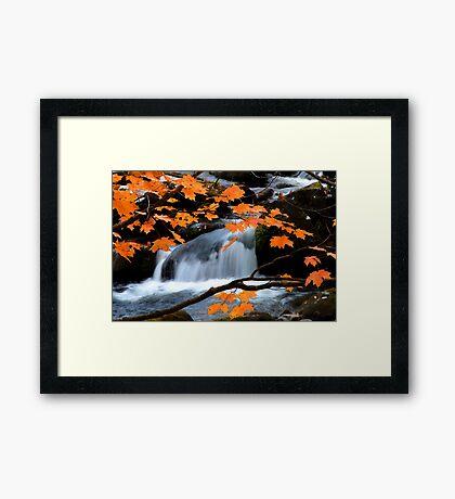 Mountain Splendor  Framed Print
