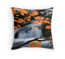 Mountain Splendor  Throw Pillow