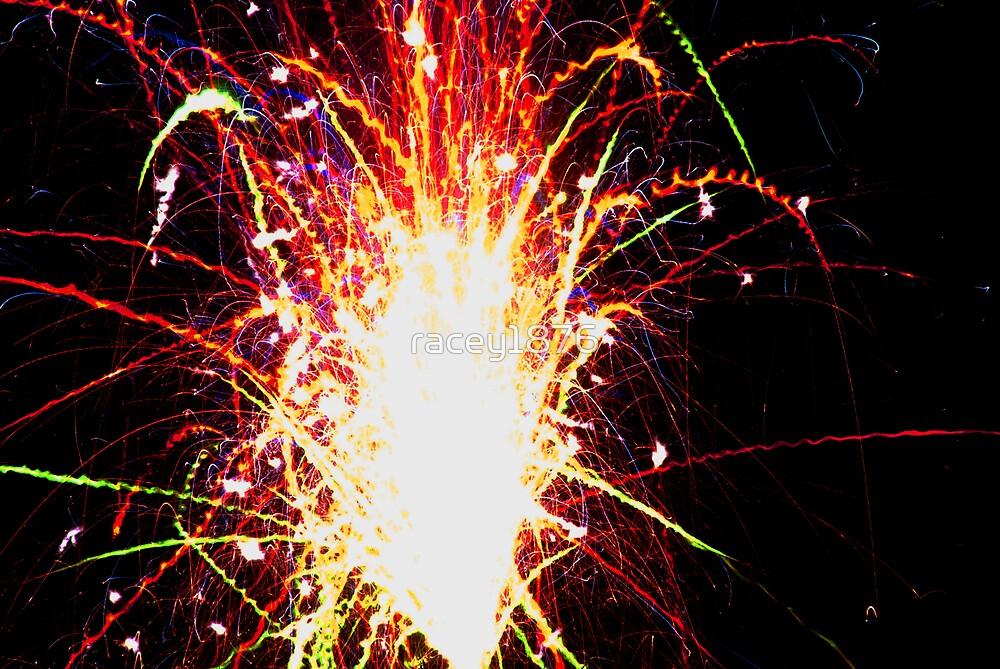 Firework night by racey1876
