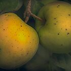 two apples on a tree by Nicole W.