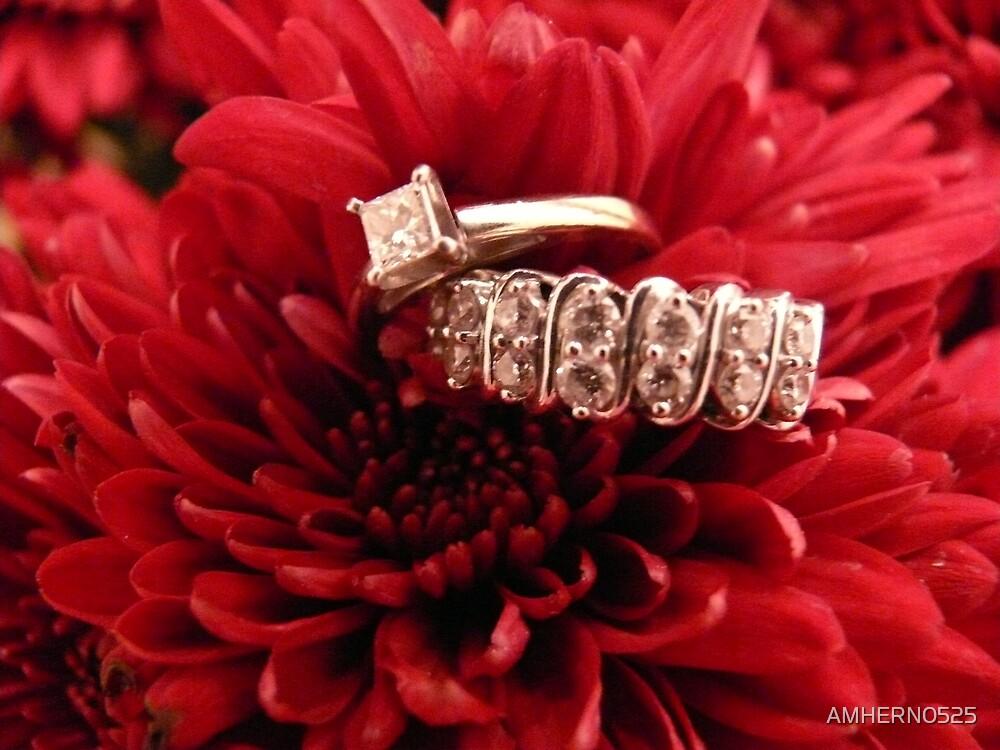 WEDDING RINGS by AMHERN0525