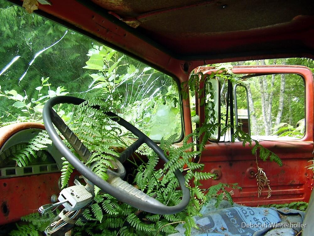 Life on the road by Deborah Winterholler