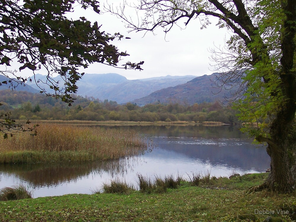 The Lake District 2 by Debbie Vine