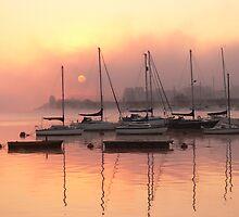 Misty Morning by brummieboy