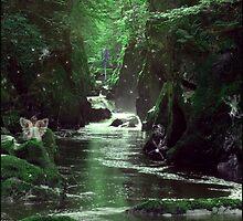 Fairy Glen Falls by Harri