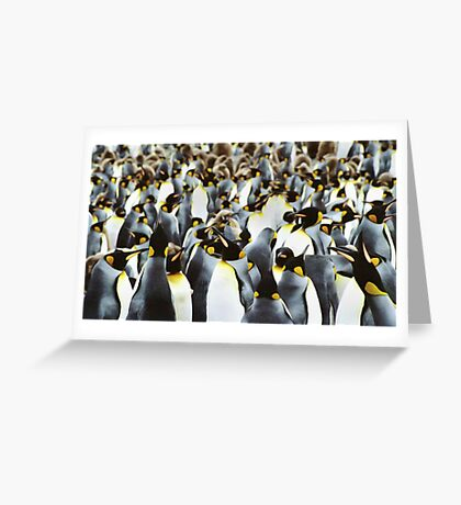 Penguin Power Greeting Card