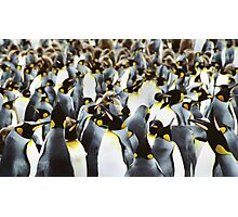 Penguin Power Photographic Print