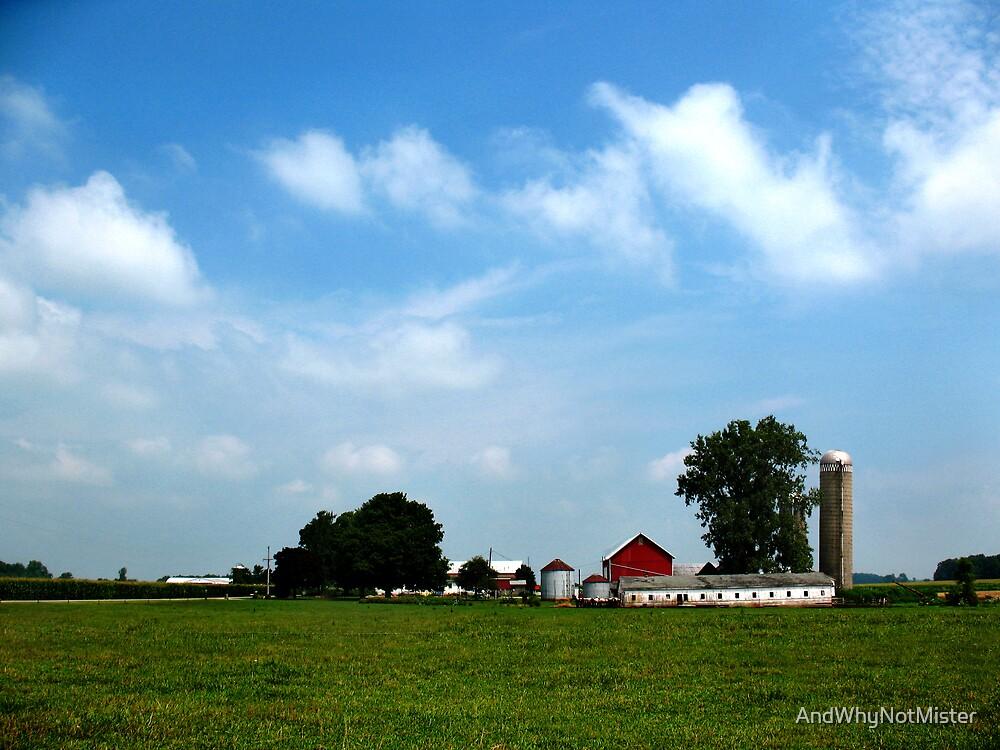 Indiana Farmland by AndWhyNotMister