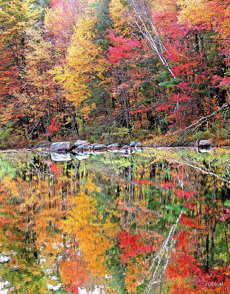 Autumn Stillness ! by robkal