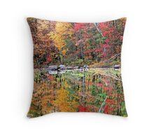 Autumn Stillness ! Throw Pillow