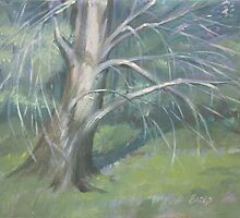 Tree Study by Linda Eades Blackburn