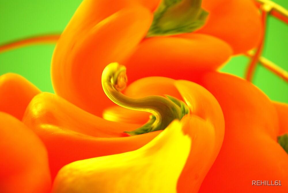 Bellpepper and Lemon Swirl I by REHILL61