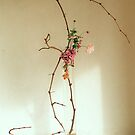 Ikebana-032 by Baiko