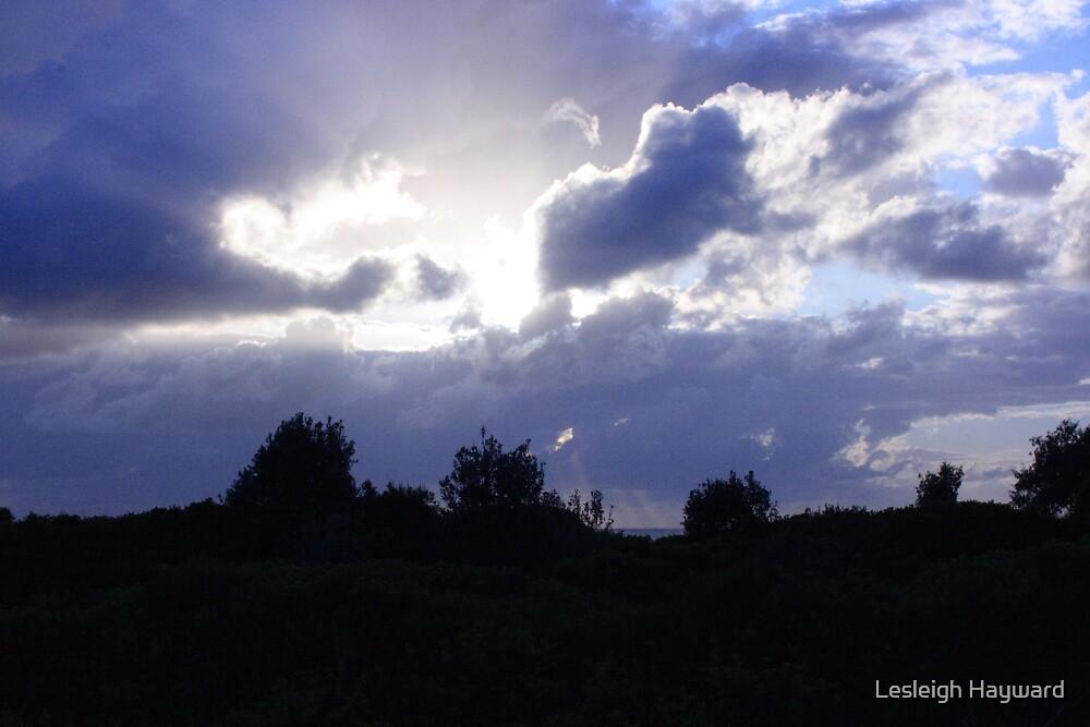 heaven? by Lesleigh Hayward