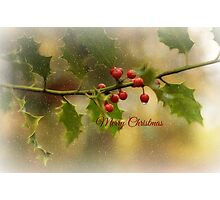 Christmas Holly` Photographic Print