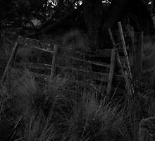 Gate-Kny Farm by Andrew Forster