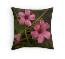 Pink Oxalis Throw Pillow