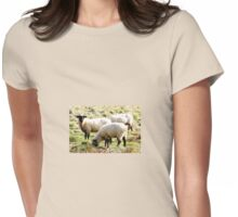 Sheep In Pennsylvania Womens Fitted T-Shirt