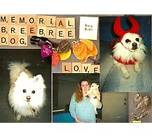 Memorial to Bree Bree Photographic Print