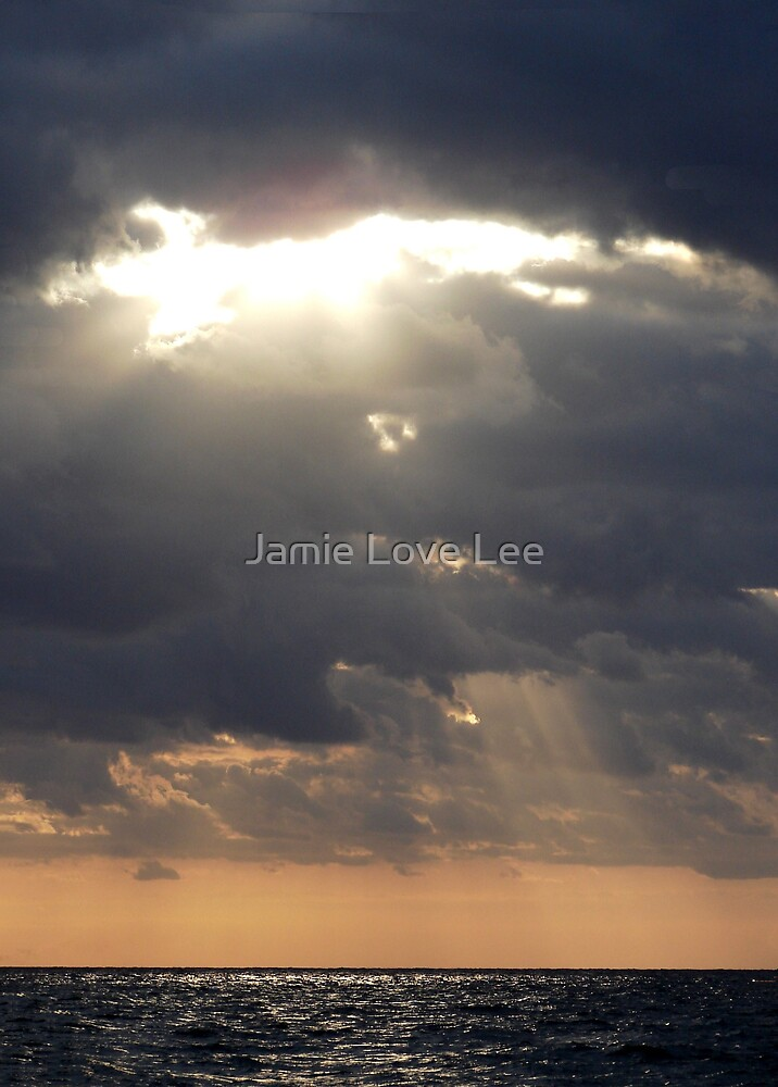 The Opening by Jamie Lee