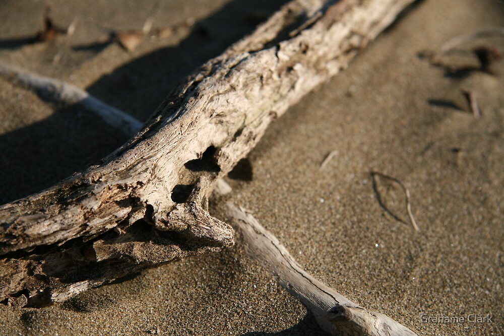 Driftwood by Grahame Clark
