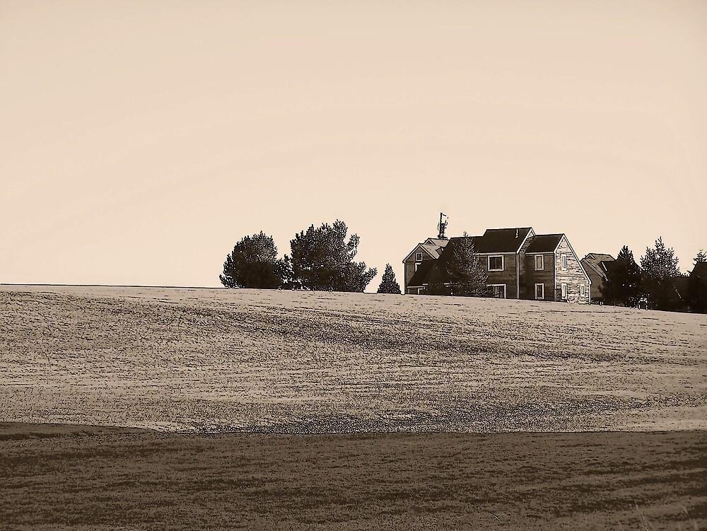 Hilltop by Gene Cyr