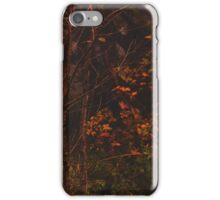 Maple Song iPhone Case/Skin