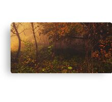 Maple Song Canvas Print