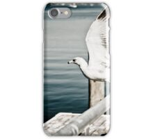 Seagull flying iPhone Case/Skin