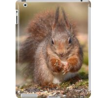 The cutest little squirrel iPad Case/Skin