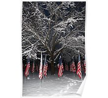 American Flags  Poster