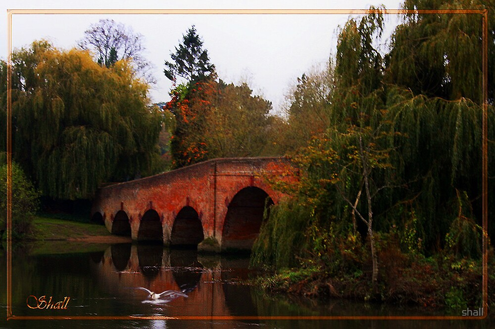 Autumn on the River Thames by shall