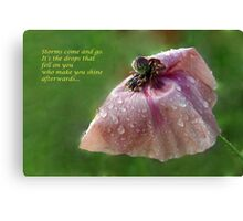 poppy after the rain Canvas Print