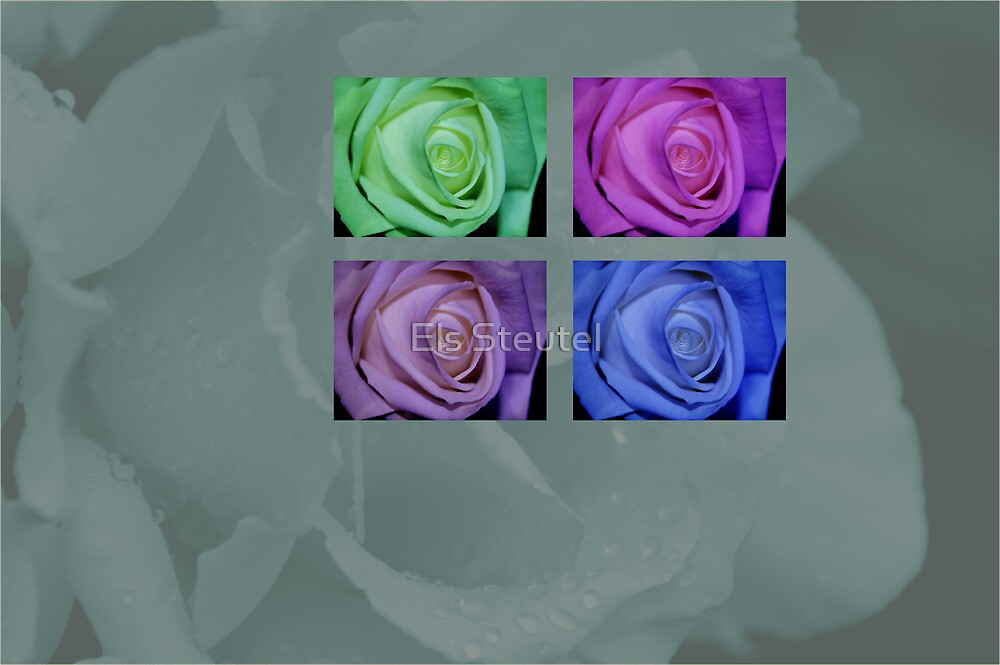 roses 4 you by Els Steutel