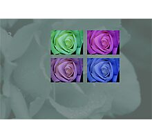 roses 4 you Photographic Print