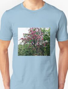 Pink tree blossoms Unisex T-Shirt