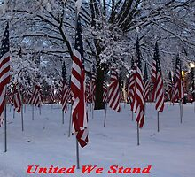 United We Stand ~ Flags by ChereeCheree