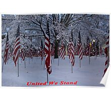 United We Stand ~ Flags Poster