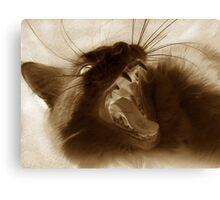 Furry Viper Canvas Print