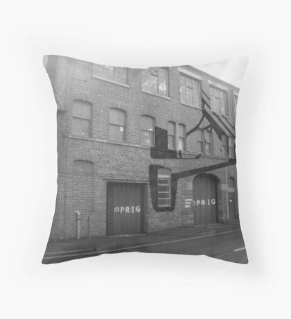 001 - A Series - 03 Throw Pillow