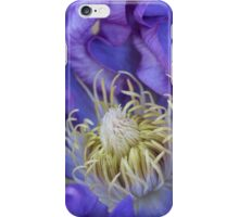 Clematis Glory iPhone Case/Skin