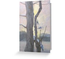 Nuthatches  Greeting Card