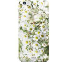 White Geraldton Wax  iPhone Case/Skin